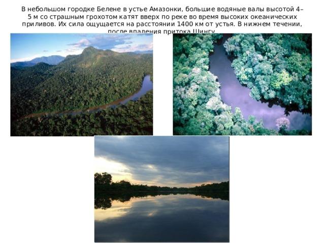 В небольшом городке Белене в устье Амазонки, большие водяные валы высотой 4–5 м со страшным грохотом катят вверх по реке во время высоких океанических приливов. Их сила ощущается на расстоянии 1400 км от устья. В нижнем течении, после впадения притока Шингу.