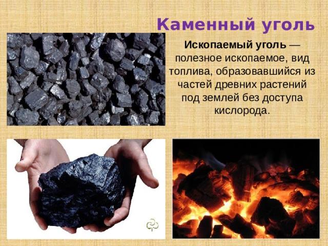 Каменный уголь Ископаемый уголь — полезное ископаемое, вид топлива, образовавшийся из частей древних растений под землей без доступа кислорода.