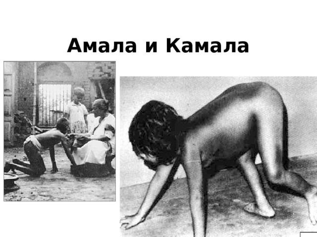 Амала и Камала