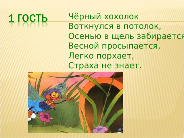 Чёрный хохолок Воткнулся в потолок, Осенью в щель забирается, Весной просыпается, Легко порхает, Страха не знает.