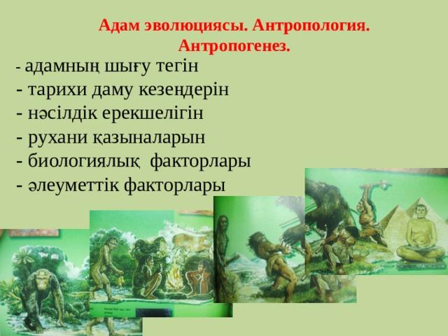Адам эволюциясы. Антропология. Антропогенез.       -  адамның шығу тегін  - тарихи даму кезеңдерін  - нәсілдік ерекшелігін  - рухани қазыналарын  - биологиялық факторлары  - әлеуметтік факторлары