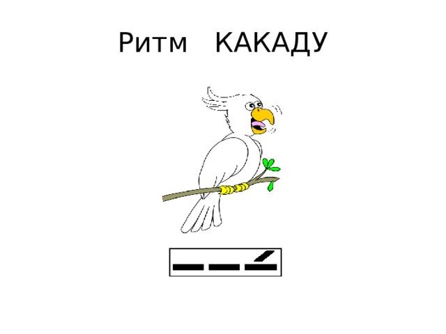 Ритм КАКАДУ