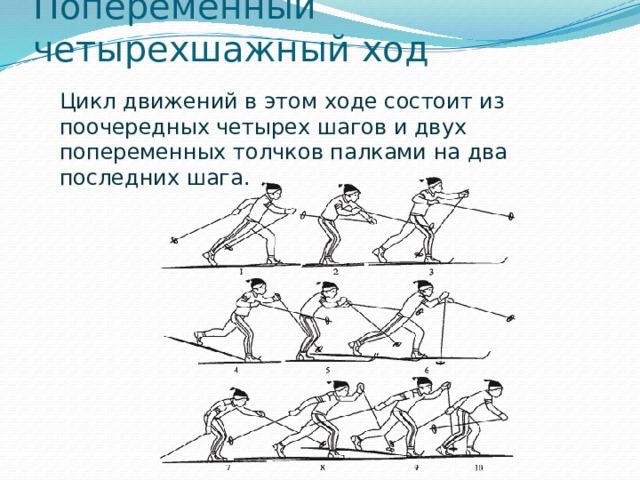Попеременный четырехшажный ход Цикл движений в этом ходе состоит из поочередных четырех шагов и двух попеременных толчков палками на два последних шага.