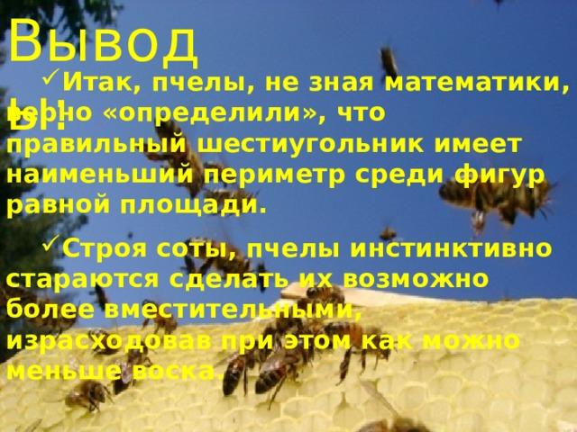 Выводы: Итак, пчелы, не зная математики, верно «определили», что правильный шестиугольник имеет наименьший периметр среди фигур равной площади.  Строя соты, пчелы инстинктивно стараются сделать их возможно более вместительными, израсходовав при этом как можно меньше воска.