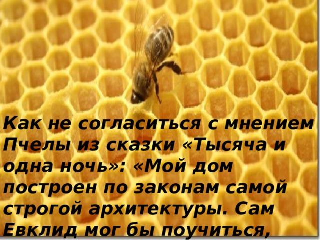 Как не согласиться с мнением Пчелы из сказки «Тысяча и одна ночь»: «Мой дом построен по законам самой строгой архитектуры. Сам Евклид мог бы поучиться, познавая геометрию моих сот».