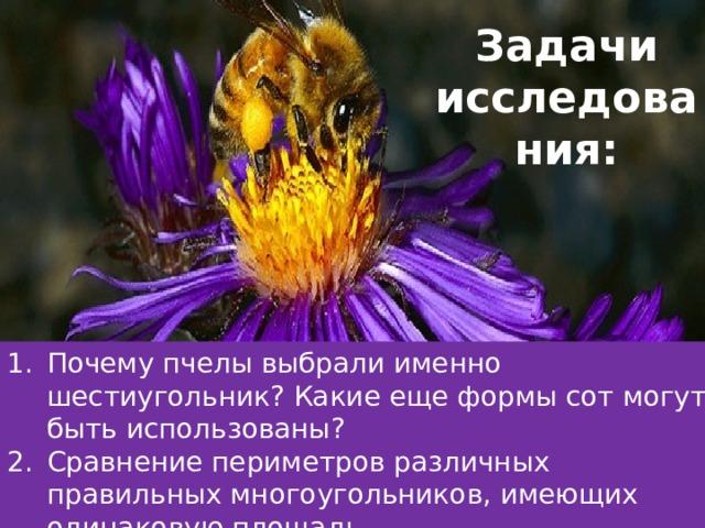 Задачи исследования:   Почему пчелы выбрали именно шестиугольник? Какие еще формы сот могут быть использованы? Сравнение периметров различных правильных многоугольников, имеющих одинаковую площадь. Динамическая геометрия – средство  информационного общения между пчелами. 4. Где применимы еще пчелиные соты?