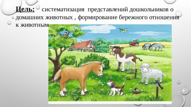 Цель:  систематизация представлений дошкольников о домашних животных , формирование бережного отношения к животным.