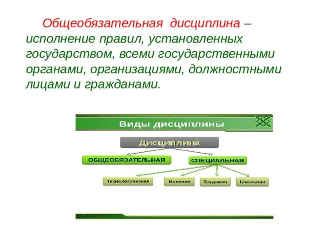 Общеобязательная дисциплина – исполнение правил, установленных государством, всеми государственными органами, организациями, должностными лицами и гражданами.