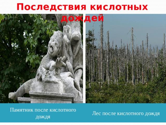 Последствия кислотных дождей Памятник после кислотного дождя Лес после кислотного дождя