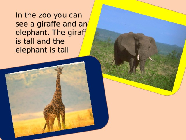 In the zoo you can see a giraffe and an elephant. The giraffe is tall and the elephant is tall