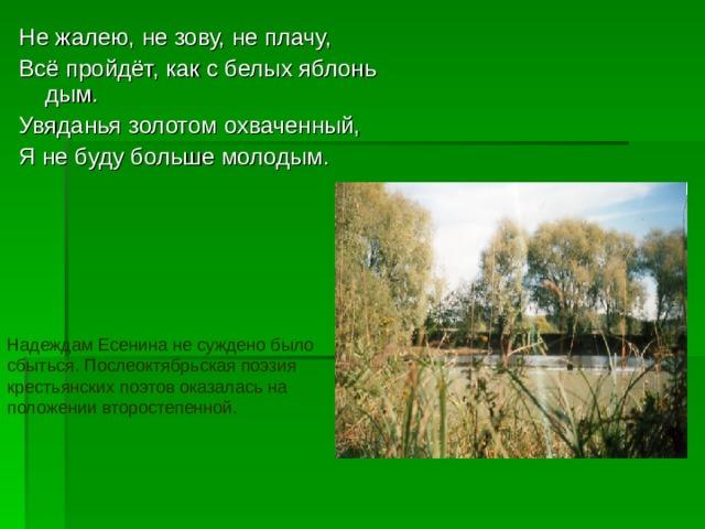 Не жалею, не зову, не плачу, Всё пройдёт, как с белых яблонь дым. Увяданья золотом охваченный, Я не буду больше молодым. Надеждам Есенина не суждено было сбыться. Послеоктябрьская поэзия крестьянских поэтов оказалась на положении второстепенной.
