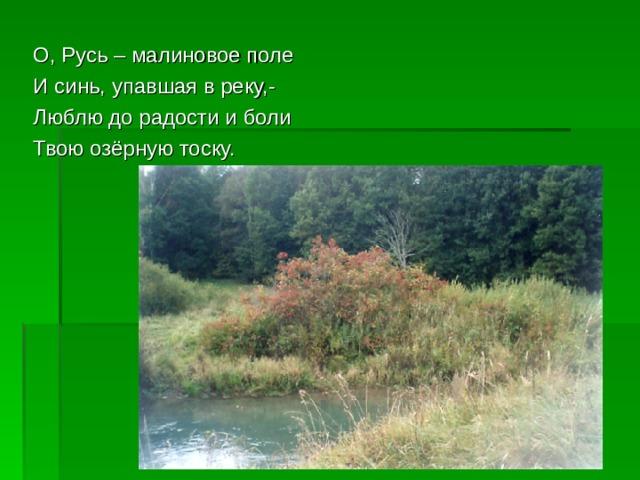 О, Русь – малиновое поле И синь, упавшая в реку,- Люблю до радости и боли Твою озёрную тоску.