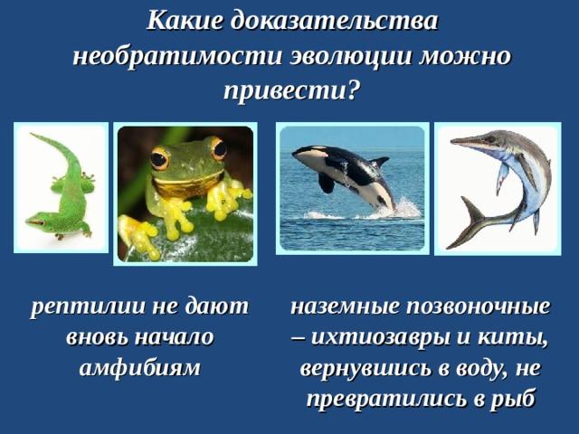 Какие доказательства необратимости эволюции можно привести? рептилии не дают вновь начало амфибиям наземные позвоночные – ихтиозавры и киты, вернувшись в воду, не превратились в рыб