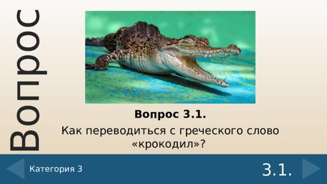 Вопрос 3.1. Как переводиться с греческого слово «крокодил»? Категория 3 3.1.
