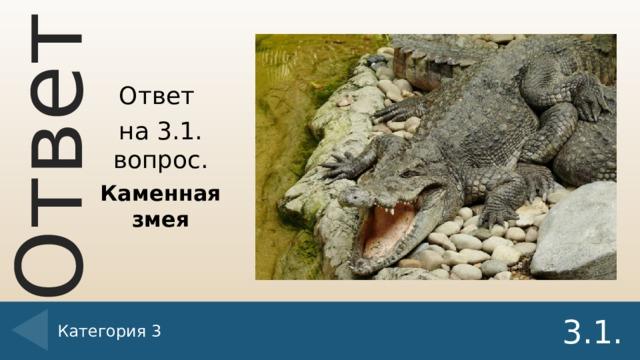 Ответ на 3.1. вопрос. Каменная змея Категория 3 3.1.