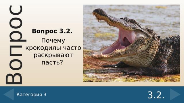 Вопрос 3.2. Почему крокодилы часто раскрывают пасть? Категория 3 3.2.