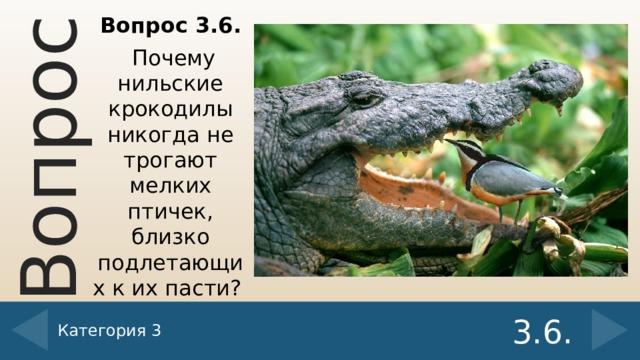 Вопрос 3.6.  Почему нильские крокодилы никогда не трогают мелких птичек, близко подлетающих к их пасти? Категория 3 3.6.
