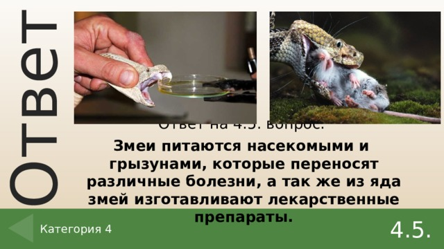 Ответ на 4.5. вопрос. Змеи питаются насекомыми и грызунами, которые переносят различные болезни, а так же из яда змей изготавливают лекарственные препараты. 4.5. Категория 4