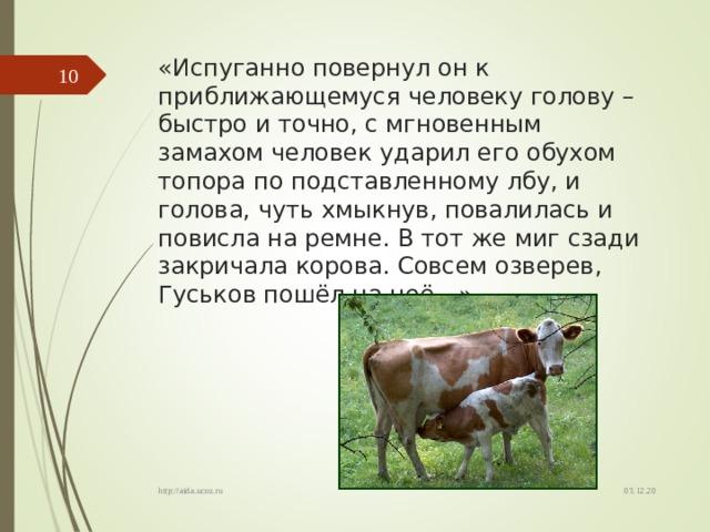 «Испуганно повернул он к приближающемуся человеку голову – быстро и точно, с мгновенным замахом человек ударил его обухом топора по подставленному лбу, и голова, чуть хмыкнув, повалилась и повисла на ремне. В тот же миг сзади закричала корова. Совсем озверев, Гуськов пошёл на неё…»  03.12.20 http://aida.ucoz.ru