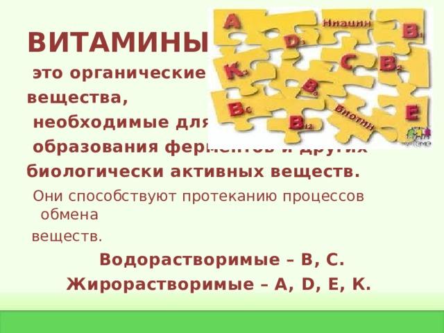 ВИТАМИНЫ -  это органические вещества,  необходимые для  образования ферментов и других биологически активных веществ.  Они способствуют протеканию процессов обмена  веществ. Водорастворимые – В, С. Жирорастворимые – А, D , Е, К.