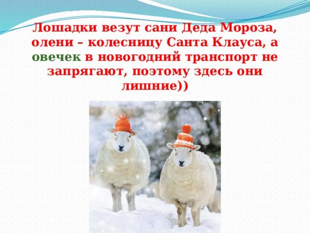 Лошадки везут сани Деда Мороза, олени – колесницу Санта Клауса, а овечек в новогодний транспорт не запрягают, поэтому здесь они лишние))