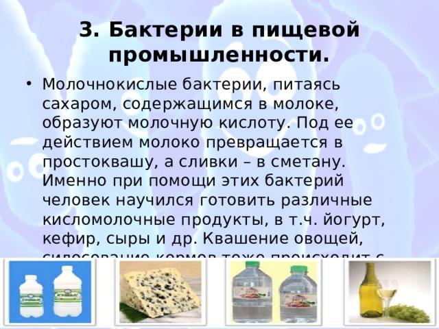 3. Бактерии в пищевой промышленности.