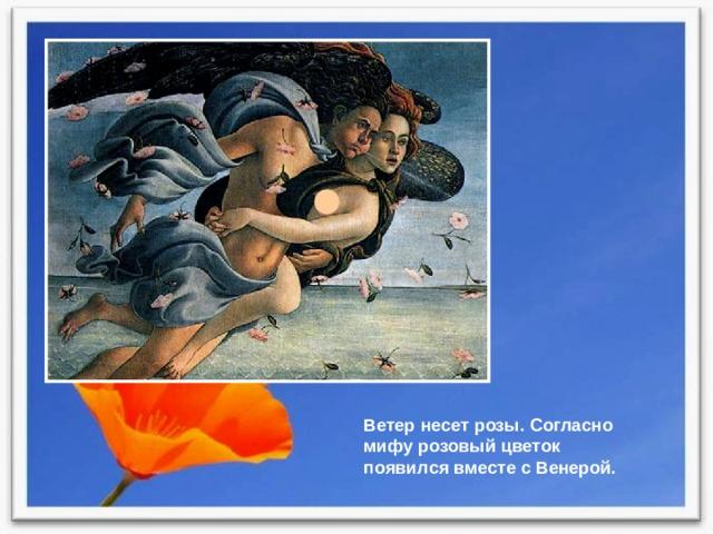 Ветер несет розы. Согласно мифу розовый цветок появился вместе с Венерой.