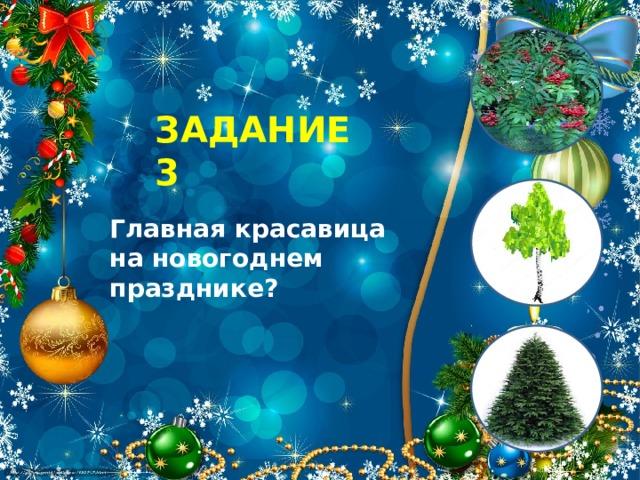 ЗАДАНИЕ 3 Главная красавица на новогоднем празднике?
