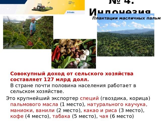 № 4. Индонезия Плантации масличных пальм   Совокупный доход от сельского хозяйства составляет 127 млрд долл.   В стране почти половина населения работает в сельском хозяйстве. Это крупнейший экспортер специй (гвоздика, корица) пальмового масла (1 место), натурального каучука, маниоки, ванили (2 место), какао и риса (3 место), кофе (4 место), табака (5 место), чая (6 место)