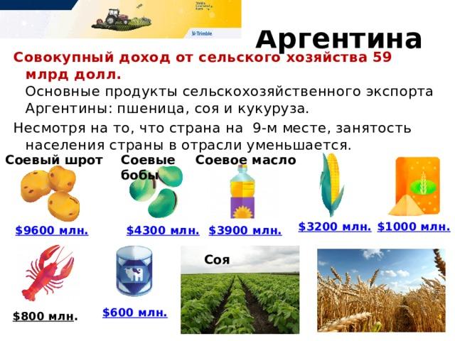 $3900 млн. соевое масло  № 9. Аргентина Совокупный доход от сельского хозяйства 59 млрд долл.  Основные продукты сельскохозяйственного экспорта Аргентины: пшеница, соя и кукуруза. Несмотря на то, что страна на 9-м месте, занятость населения страны в отрасли уменьшается. Соевый шрот Соевые бобы Соевое масло $1000 млн. $3200 млн. $3900 млн. $4300 млн. $9600 млн. Соя $600 млн. $800 млн .