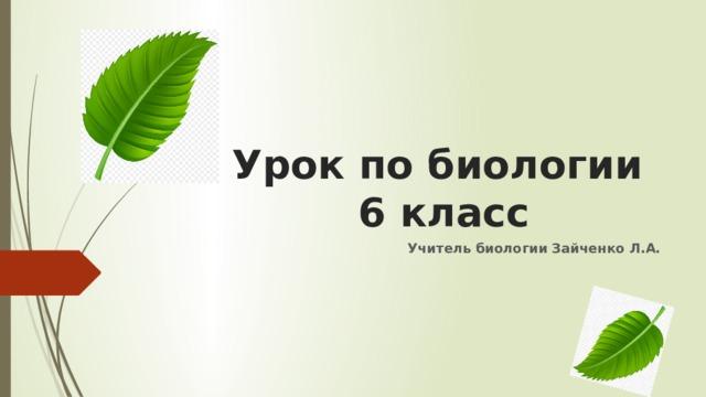 Урок по биологии  6 класс Учитель биологии Зайченко Л.А.