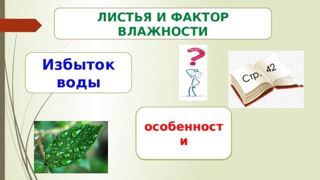 Стр. 42 Листья и фактор влажности Избыток воды Листья крупные особенности Много устьиц