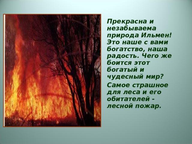 Прекрасна и незабываема природа Ильмен! Это наше с вами богатство, наша радость. Чего же боится этот богатый и чудесный мир? Самое страшное для леса и его обитателей - лесной пожар.