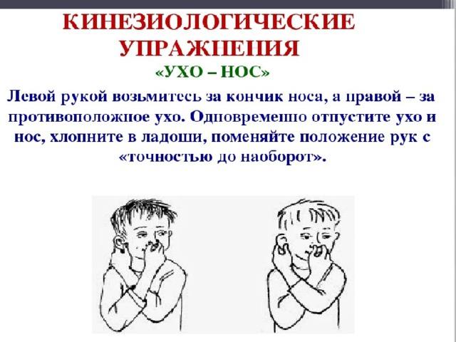 1.Упражнение. Мозговая гимнастика «Ухо-Нос»