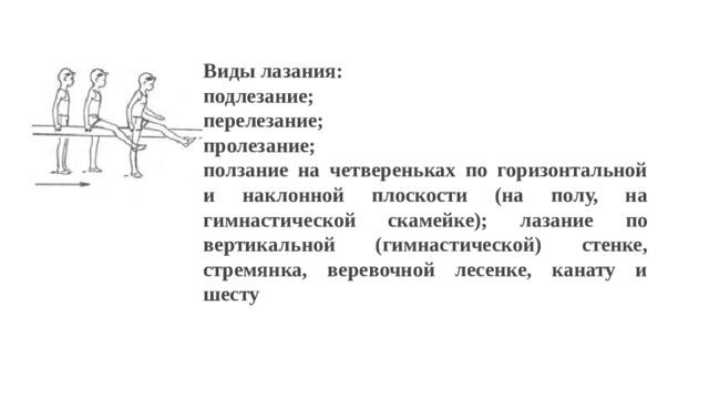 Виды лазания: подлезание; перелезание; пролезание; ползание на четвереньках по горизонтальной и наклонной плоскости (на полу, на гимнастической скамейке); лазание по вертикальной (гимнастической) стенке, стремянка, веревочной лесенке, канату и шесту