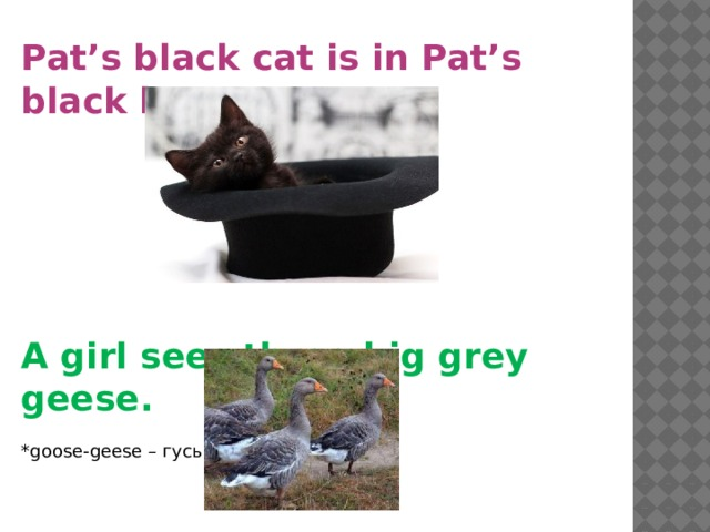 Pat's black cat is in Pat's black hat.  A girl sees three big grey geese. *goose-geese – гусь