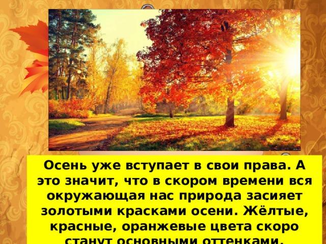 Осень уже вступает в свои права. А это значит, что в скором времени вся окружающая нас природа засияет золотыми красками осени. Жёлтые, красные, оранжевые цвета скоро станут основными оттенками, окружающими нас.