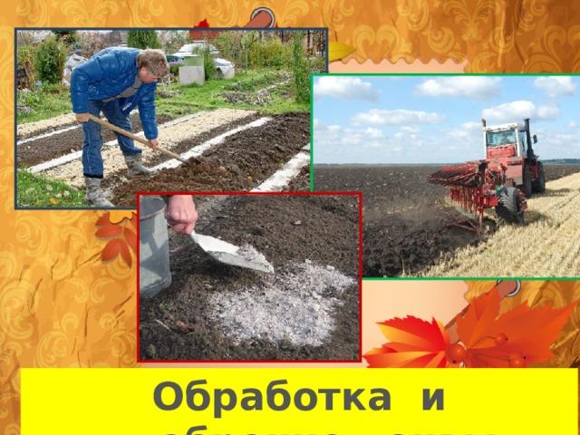 Обработка и удобрение почвы