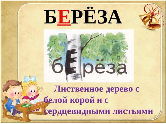 Б Е РЁЗА  Лиственное дерево с белой корой и с сердцевидными листьями