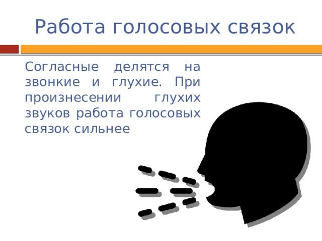Работа голосовых связок Согласные делятся на звонкие и глухие. При произнесении глухих звуков работа голосовых связок сильнее