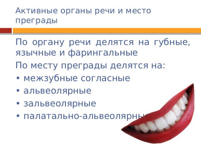 Активные органы речи и место преграды По органу речи делятся на губные, язычные и фарингальные По месту преграды делятся на: • межзубные согласные • альвеолярные • зальвеолярные • палатально-альвеолярные