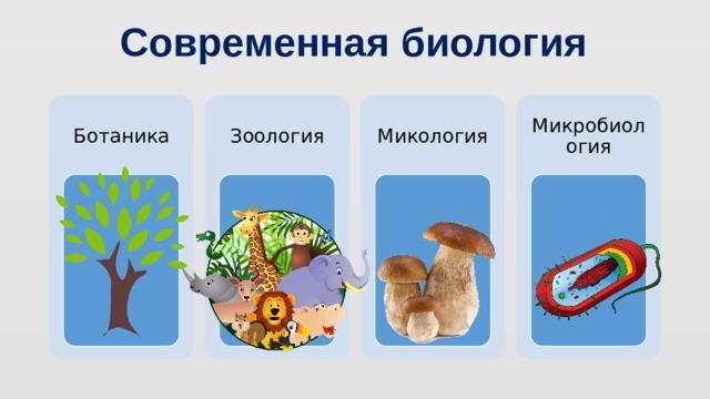 Современная биология Ботаника Зоология Микология Микробиология