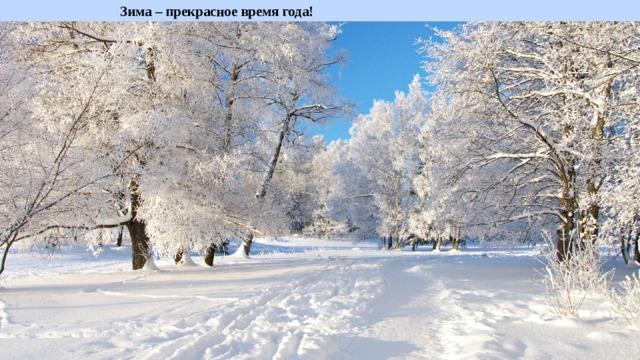 Зима – прекрасное время года!