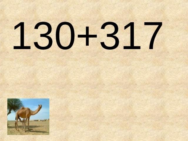 130+317
