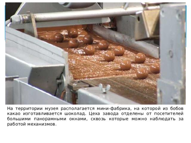 На территории музея располагается мини-фабрика, на которой из бобов какао изготавливается шоколад. Цеха завода отделены от посетителей большими панорамными окнами, сквозь которые можно наблюдать за работой механизмов .
