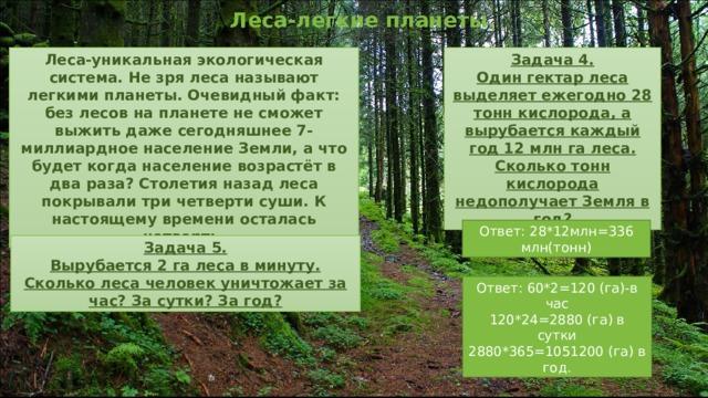 Леса-легкие планеты.  Леса-уникальная экологическая система. Не зря леса называют легкими планеты. Очевидный факт: без лесов на планете не сможет выжить даже сегодняшнее 7- миллиардное население Земли, а что будет когда население возрастёт в два раза? Столетия назад леса покрывали три четверти суши. К настоящему времени осталась четверть. Задача 4. Один гектар леса выделяет ежегодно 28 тонн кислорода, а вырубается каждый год 12 млн га леса. Сколько тонн кислорода недополучает Земля в год? Ответ: 28*12млн=336 млн(тонн) Задача 5. Вырубается 2 га леса в минуту. Сколько леса человек уничтожает за час? За сутки? За год? Ответ: 60*2=120 (га)-в час 120*24=2880 (га) в сутки 2880*365=1051200 (га) в год.