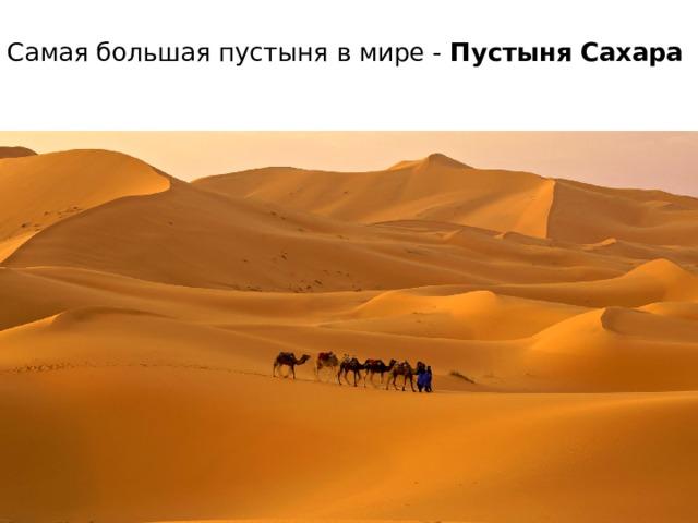 Самая большая пустыня в мире - Пустыня Сахара
