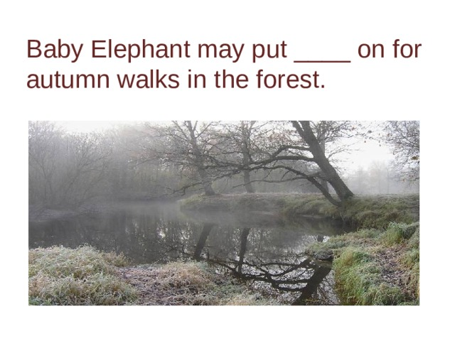 Baby Elephant may put ____ on for autumn walks in the forest.