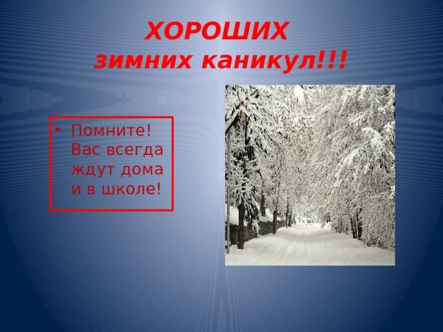 ХОРОШИХ  зимних каникул!!!