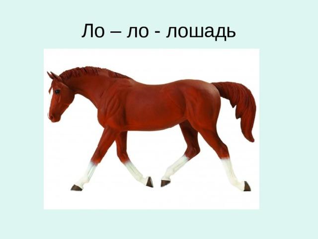 Ло – ло - лошадь